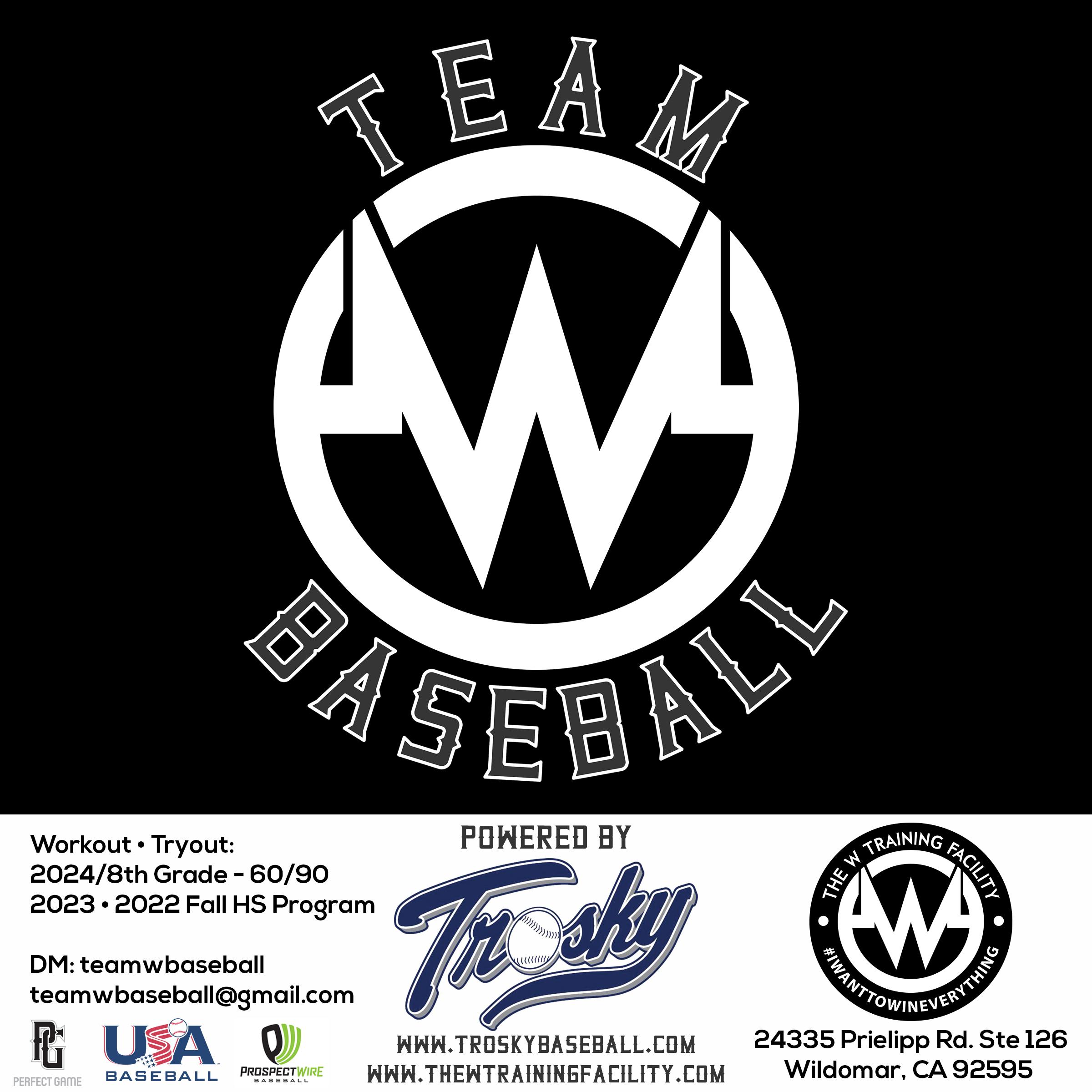 teamwbaseball-tryout